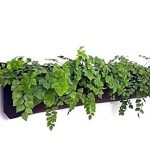 Horizontal planter 1